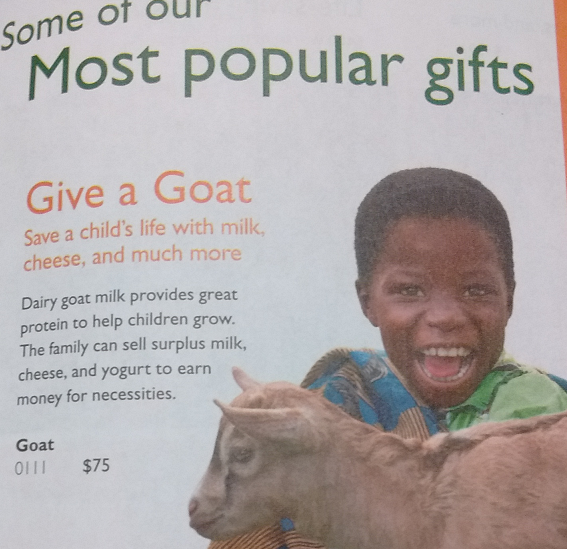 WorldVision 2016 goat