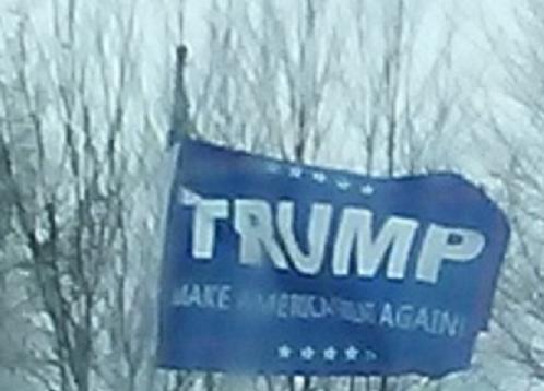 Trump flag clip