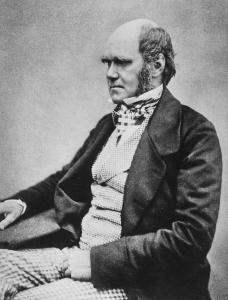 Charles Darwin public domain